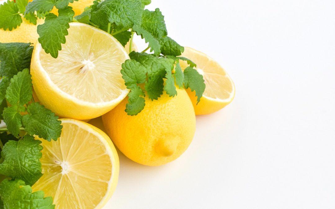boisson citron-melisse
